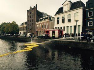 duckrace in Groningen.jpeg